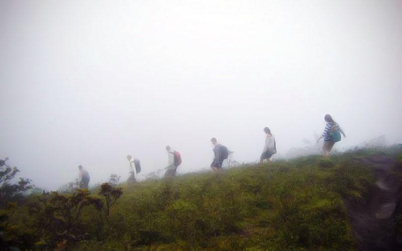 Volcano Hike